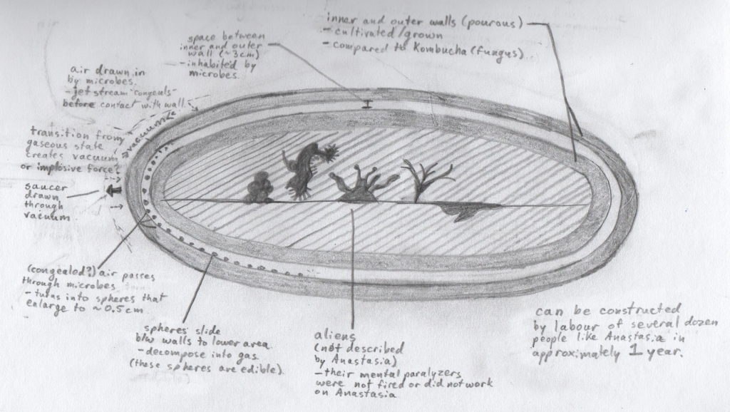anastasia's flying saucer